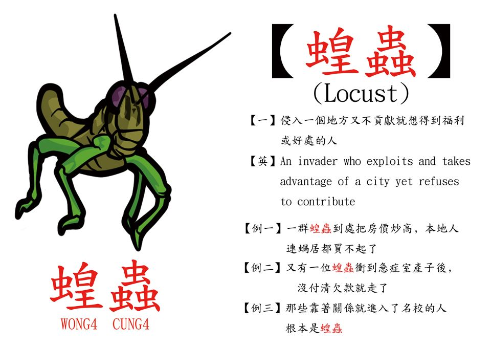 Image result for chinese locusts